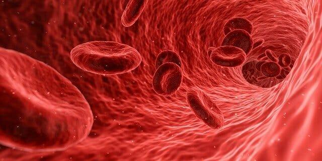 Álomfejtés vér jelentése